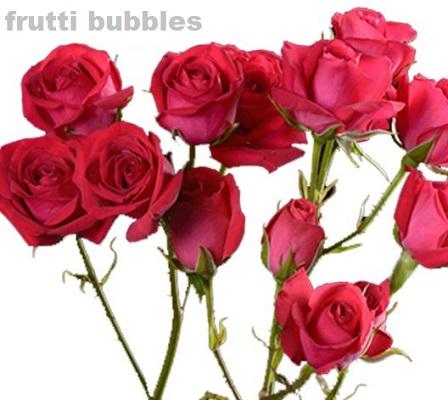 Frutti  Bubbles