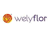 Welyflor